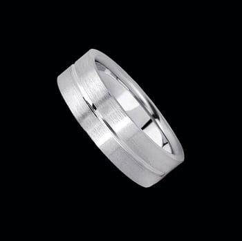 Platinum Stunning Simple Band